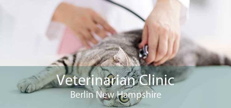 Veterinarian Clinic Berlin New Hampshire
