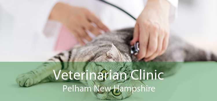 Veterinarian Clinic Pelham New Hampshire